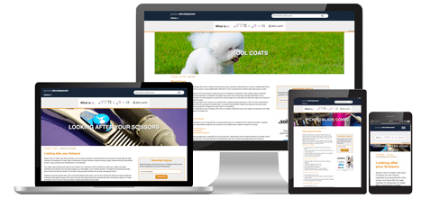 Groomer Development Responsive Design